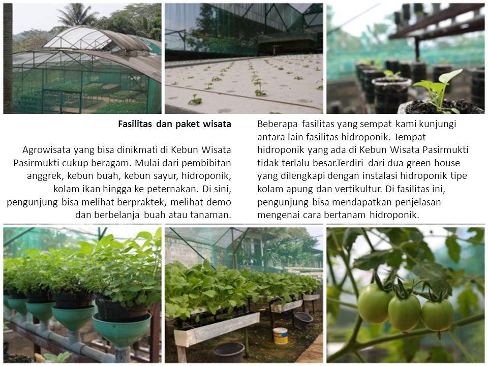 Di Kebun Wisata Pasir Mukti terdapat juga kebun buah, baik yang ditanam di dilahan terbuka maupun ditanam dalam pot (tabulampot).