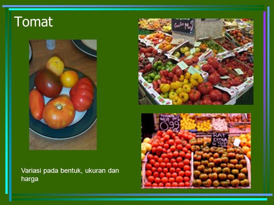 Tomat Variasi pada bentuk, ukuran dan harga
