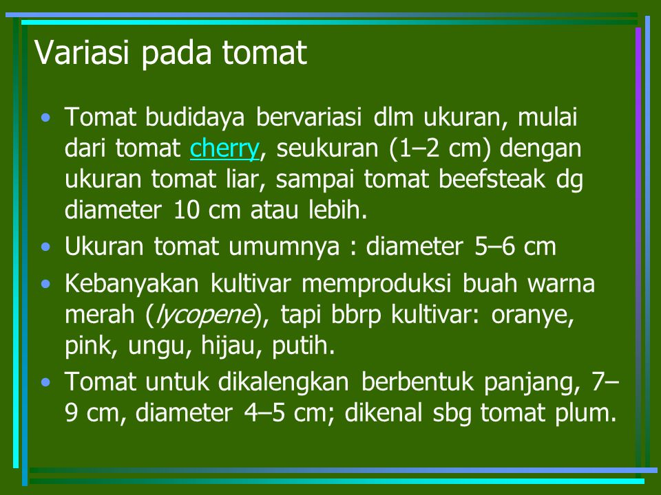 Variasi pada tomat Tomat budidaya bervariasi dlm ukuran, mulai dari tomat cherry, seukuran (1–2 cm) dengan ukuran tomat liar, sampai tomat beefsteak dg diameter 10 cm atau lebih.cherry Ukuran tomat umumnya : diameter 5–6 cm Kebanyakan kultivar memproduksi buah warna merah (lycopene), tapi bbrp kultivar: oranye, pink, ungu, hijau, putih.