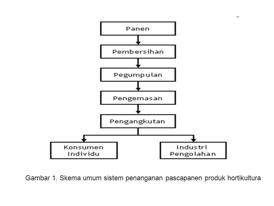 Gambar 1. Skema umum sistem penanganan pascapanen produk hortikultura