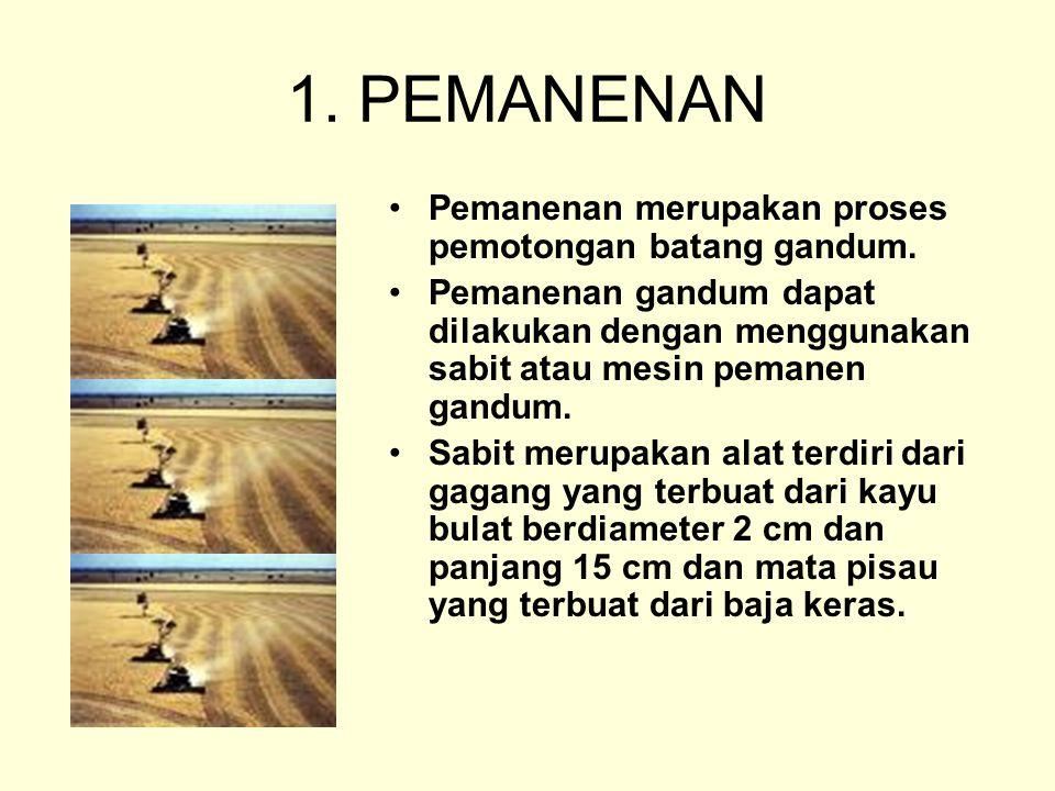 1. PEMANENAN Pemanenan merupakan proses pemotongan batang gandum. Pemanenan gandum dapat dilakukan dengan menggunakan sabit atau mesin pemanen gandum.