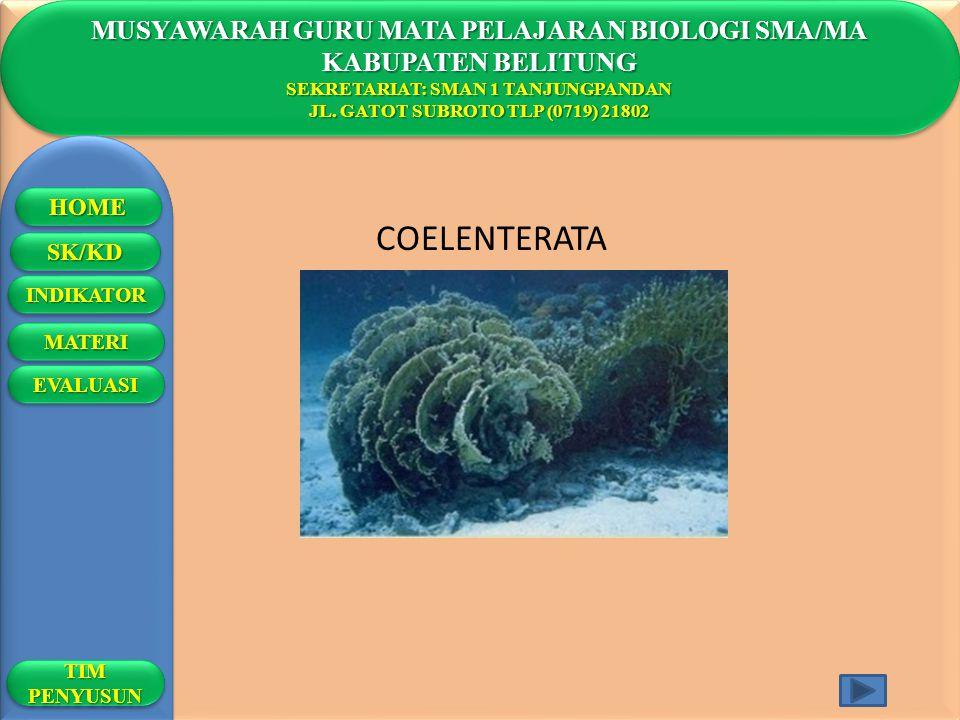 MUSYAWARAH GURU MATA PELAJARAN BIOLOGI SMA/MA KABUPATEN BELITUNG SEKRETARIAT: SMAN 1 TANJUNGPANDAN JL. GATOT SUBROTO TLP (0719) 21802 MUSYAWARAH GURU