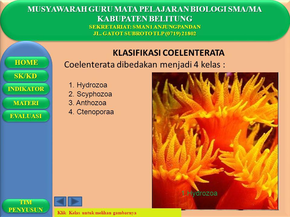 4.Ctenophora MUSYAWARAH GURU MATA PELAJARAN BIOLOGI SMA/MA KABUPATEN BELITUNG SEKRETARIAT: SMAN1 ANJUNGPANDAN JL. GATOT SUBROTO TLP (0719) 21802 MUSYA