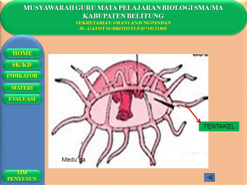 1.Jantimala, M.Pd 2.Drs.Haryanto 3.Dra.