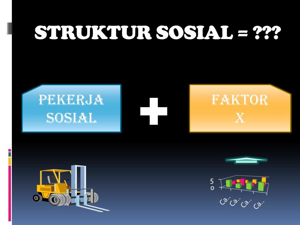 STRUKTUR SOSIAL = PEKERJA SOSIAL FAKTOR X