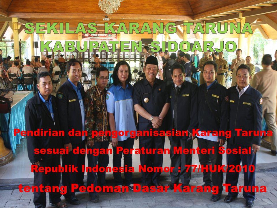 Pendirian dan pengorganisasian Karang Taruna sesuai dengan Peraturan Menteri Sosial Republik Indonesia Nomor : 77/HUK/2010 tentang Pedoman Dasar Karang Taruna