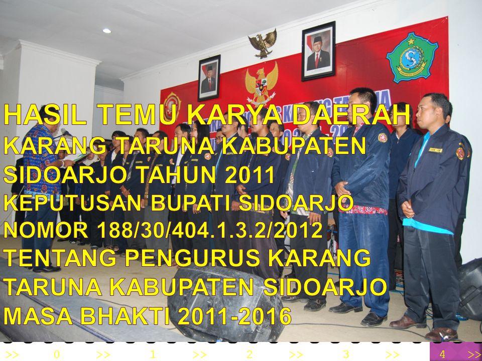Pendirian dan pengorganisasian Karang Taruna sesuai dengan Peraturan Menteri Sosial Republik Indonesia Nomor : 77/HUK/2010 tentang Pedoman Dasar Karan