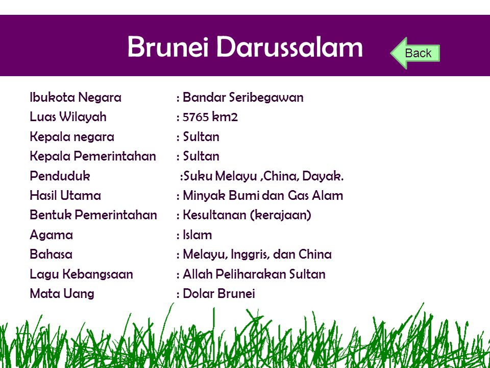 Brunei Darussalam Ibukota Negara: Bandar Seribegawan Luas Wilayah: 5765 km2 Kepala negara: Sultan Kepala Pemerintahan: Sultan Penduduk:Suku Melayu,Chi