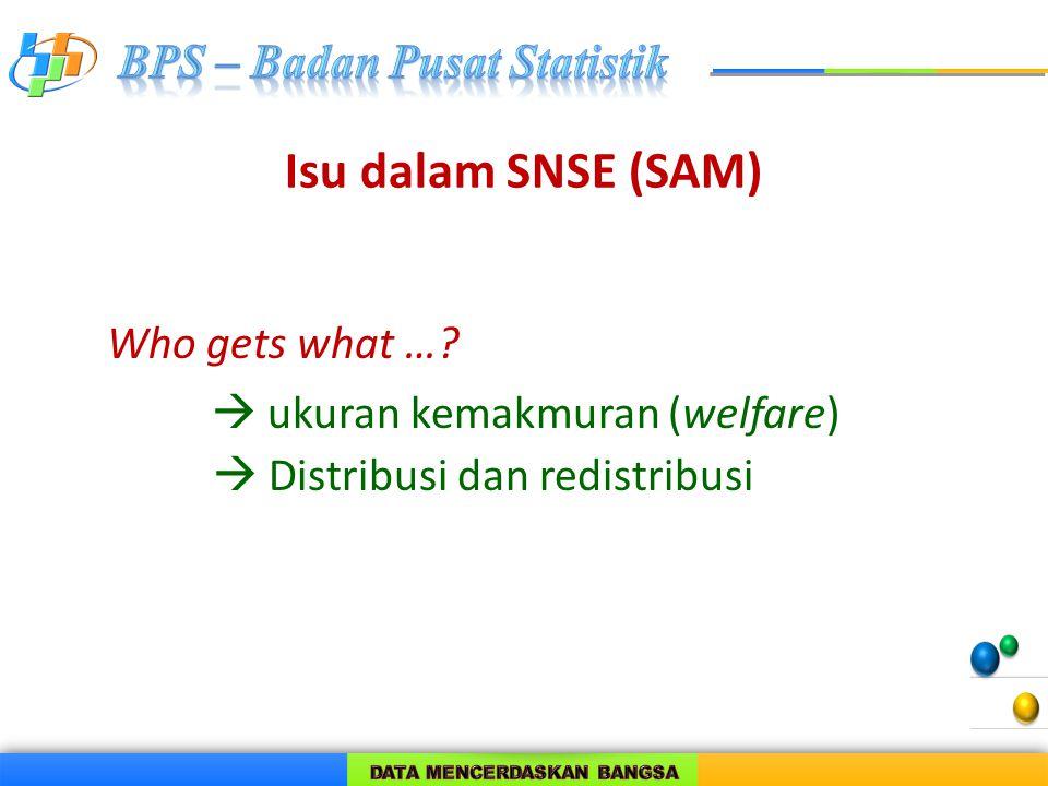 Isu dalam SNSE (SAM) Who gets what …?  ukuran kemakmuran (welfare)  Distribusi dan redistribusi