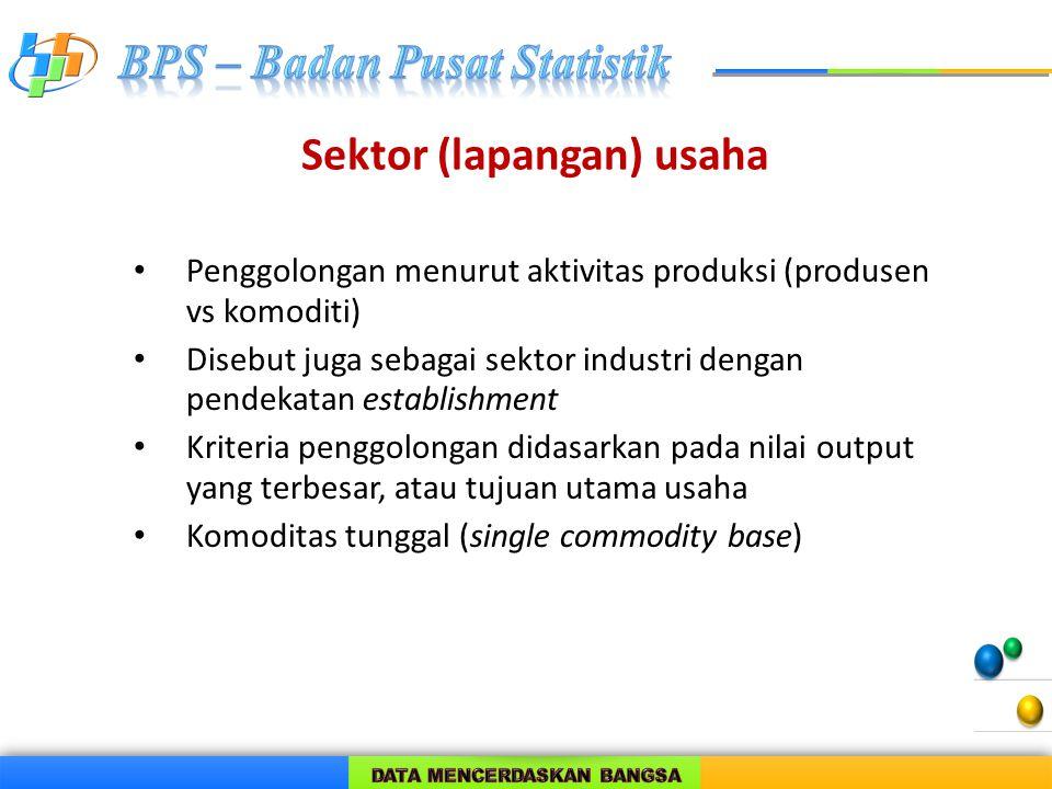 Sektor (lapangan) usaha Penggolongan menurut aktivitas produksi (produsen vs komoditi) Disebut juga sebagai sektor industri dengan pendekatan establis