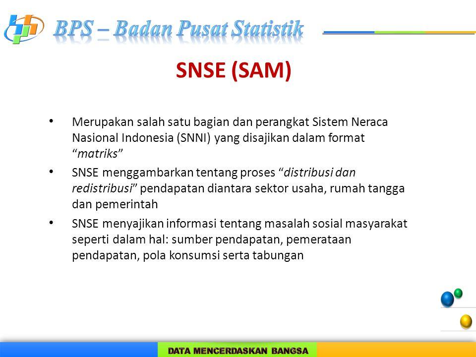 """SNSE (SAM) Merupakan salah satu bagian dan perangkat Sistem Neraca Nasional Indonesia (SNNI) yang disajikan dalam format """"matriks"""" SNSE menggambarkan"""