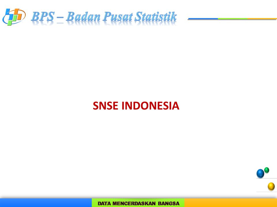 SNSE INDONESIA