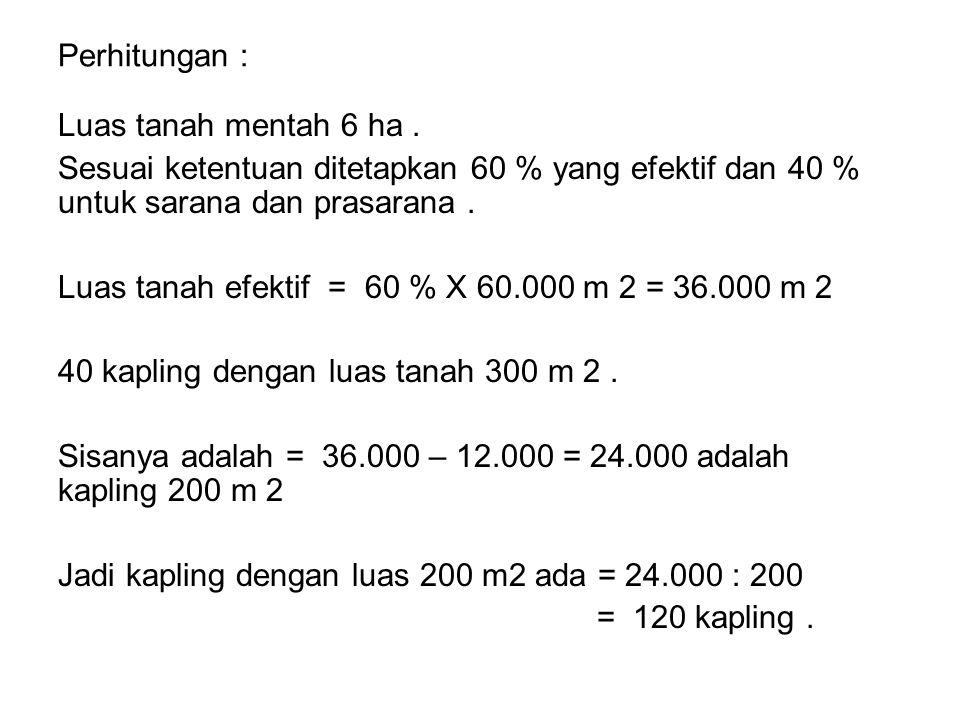 Perhitungan : Luas tanah mentah 6 ha.
