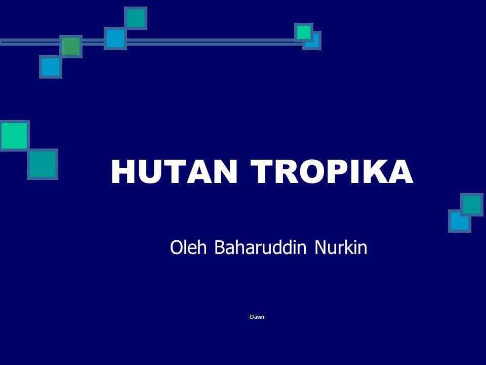 HUTAN TROPIKA Oleh Baharuddin Nurkin -Dawn-