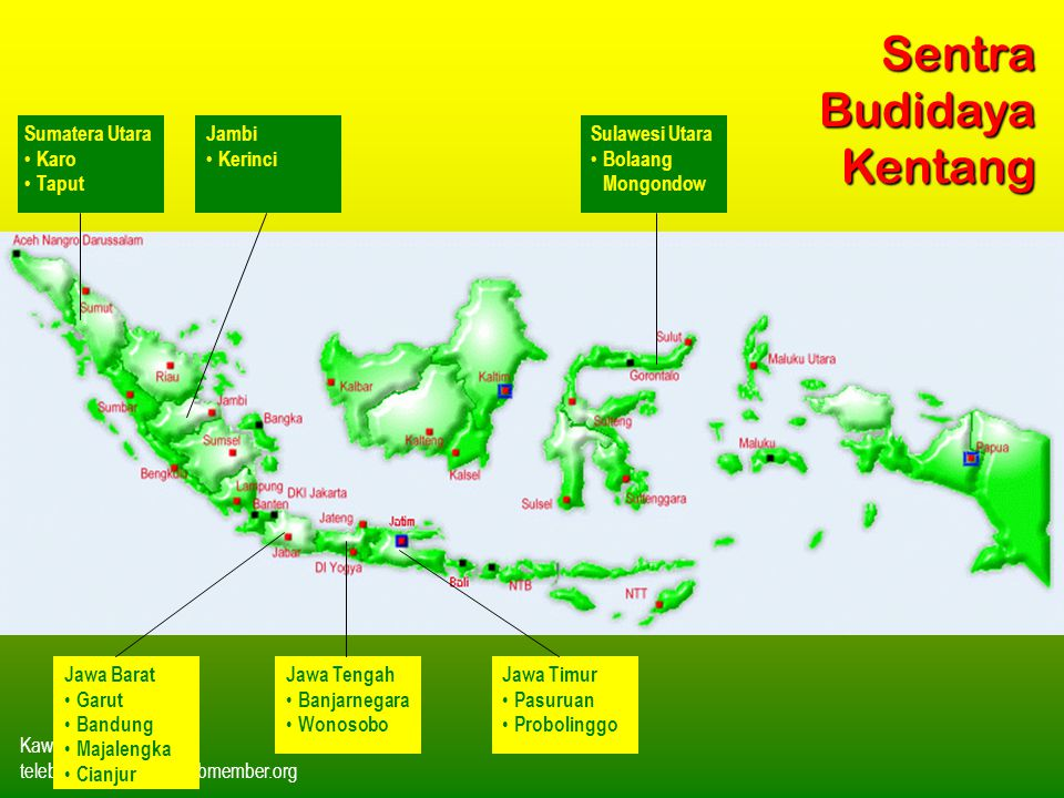 Kawi Boedisetio telebiro.bandung0@clubmember.org Jawa Tengah Banjarnegara Wonosobo Jawa Timur Pasuruan Probolinggo Jawa Barat Garut Bandung Majalengka
