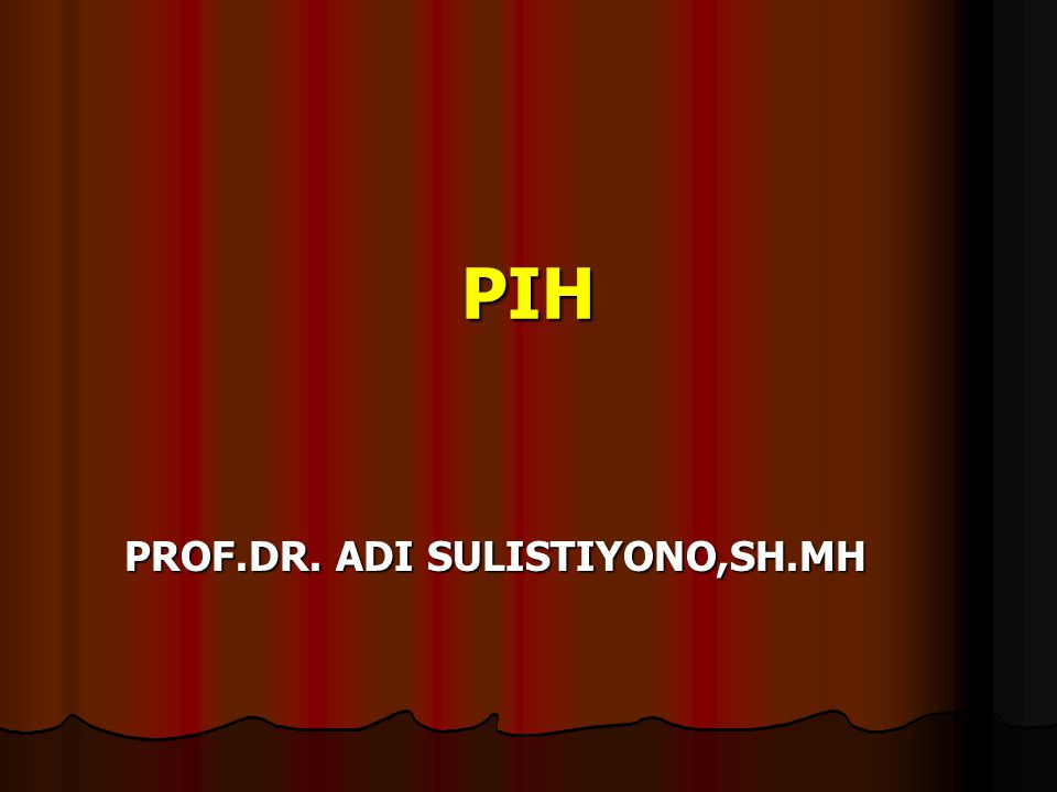 PIH PROF.DR. ADI SULISTIYONO,SH.MH