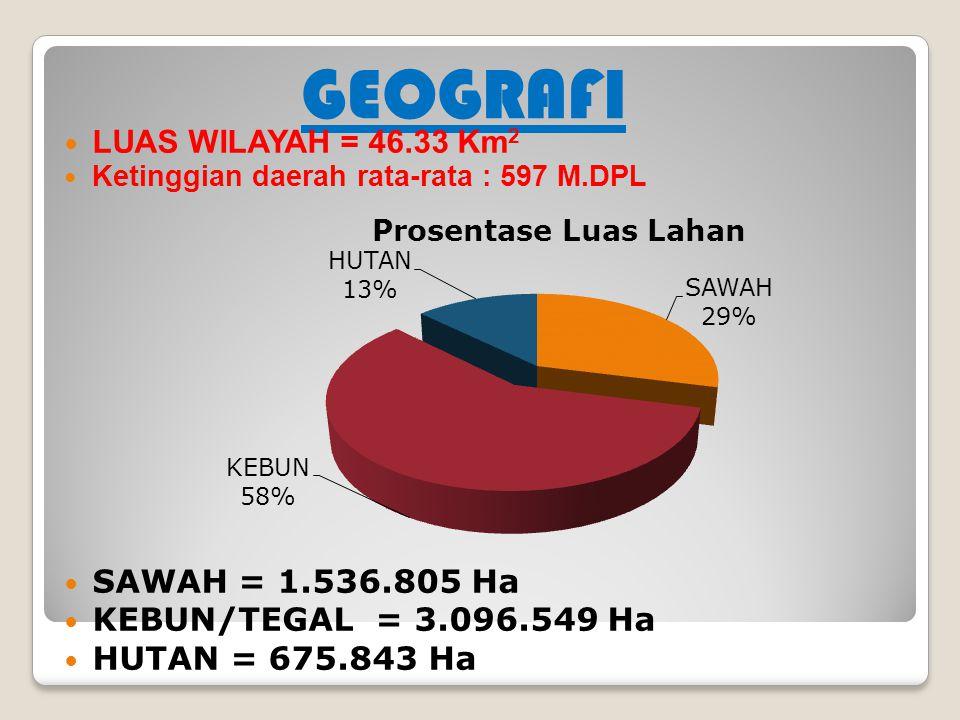 GEOGRAFI LUAS WILAYAH = 46.33 Km 2 Ketinggian daerah rata-rata : 597 M.DPL SAWAH = 1.536.805 Ha KEBUN/TEGAL = 3.096.549 Ha HUTAN = 675.843 Ha