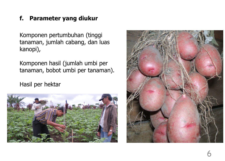 Komponen pertumbuhan (tinggi tanaman, jumlah cabang, dan luas kanopi), Komponen hasil (jumlah umbi per tanaman, bobot umbi per tanaman). Hasil per hek