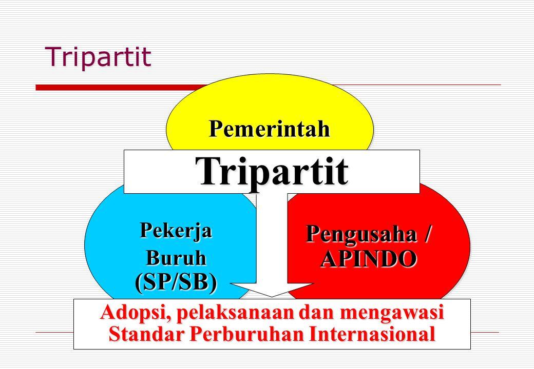 Tripartit Pekerja Buruh (SP/SB) Pekerja PemerintahPemerintah Pengusaha / APINDO Tripartit Adopsi, pelaksanaan dan mengawasi Standar Perburuhan Interna