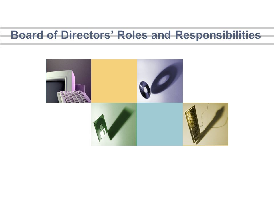 Board of Directors' Roles and Responsibilities