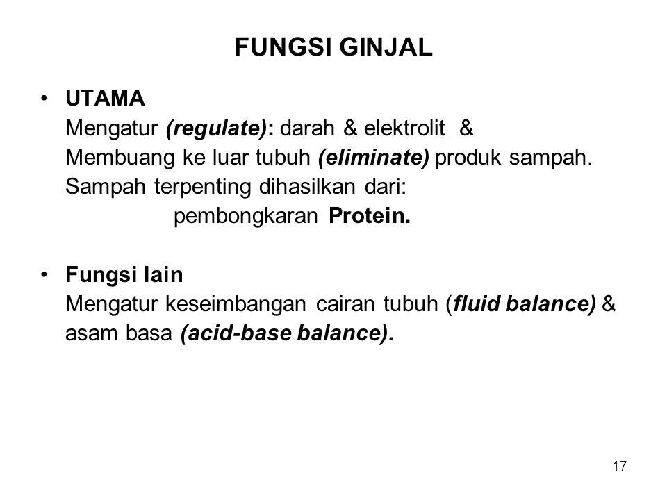 17 FUNGSI GINJAL UTAMA Mengatur (regulate): darah & elektrolit & Membuang ke luar tubuh (eliminate) produk sampah. Sampah terpenting dihasilkan dari: