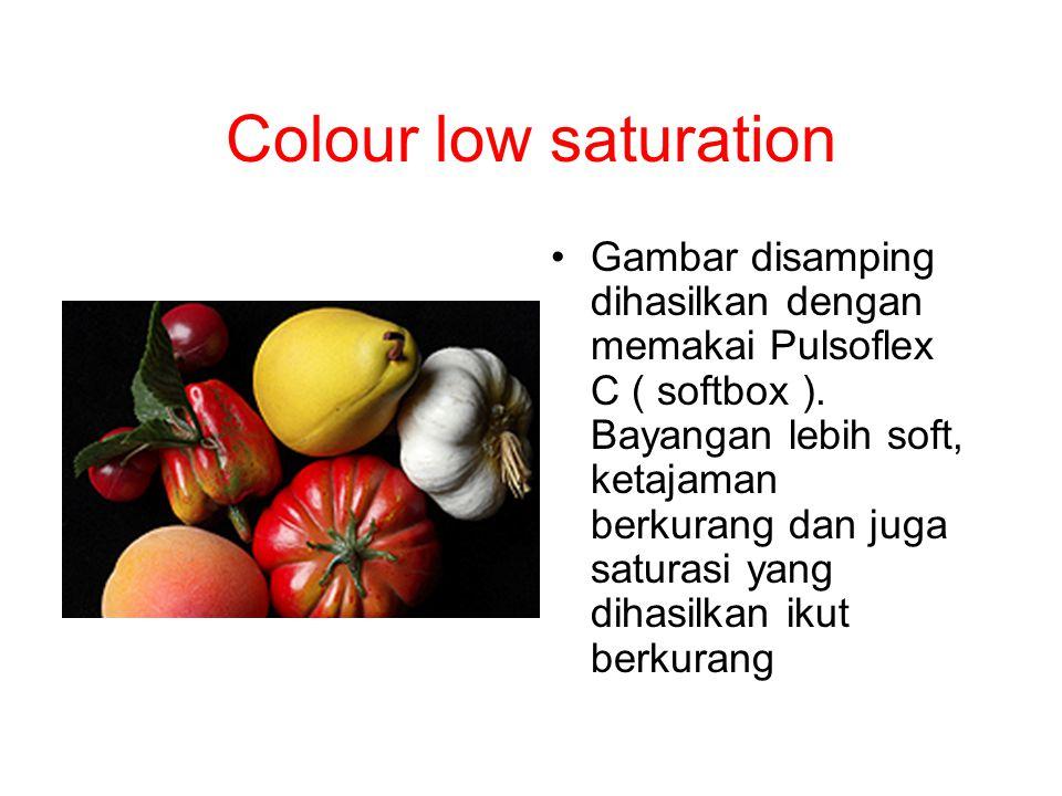 Colour low saturation Gambar disamping dihasilkan dengan memakai Pulsoflex C ( softbox ). Bayangan lebih soft, ketajaman berkurang dan juga saturasi y