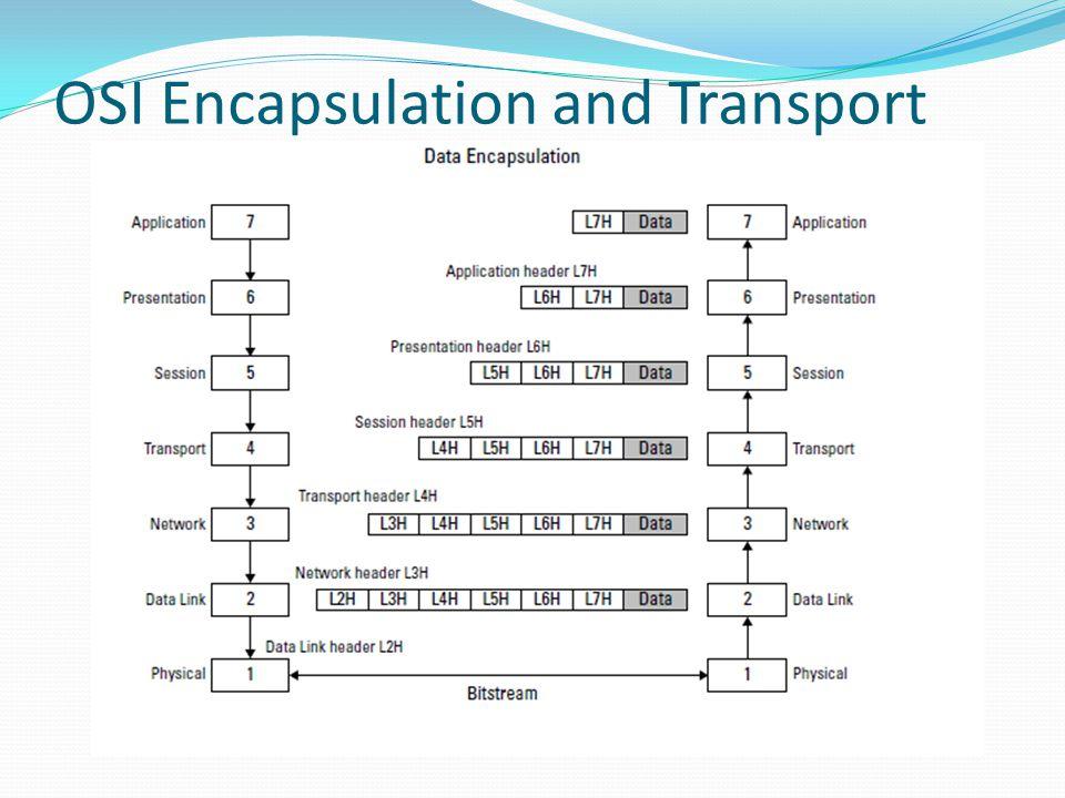 Transport Layer Menyediakan layanan pengiriman pesan dari ujung ke ujung yang dapat dikategorikan sebagai: Connection-oriented: TCP (byte-oriented) dan SCTP(stream-oriented) Connectionless: UDP dan RTP (datagram)