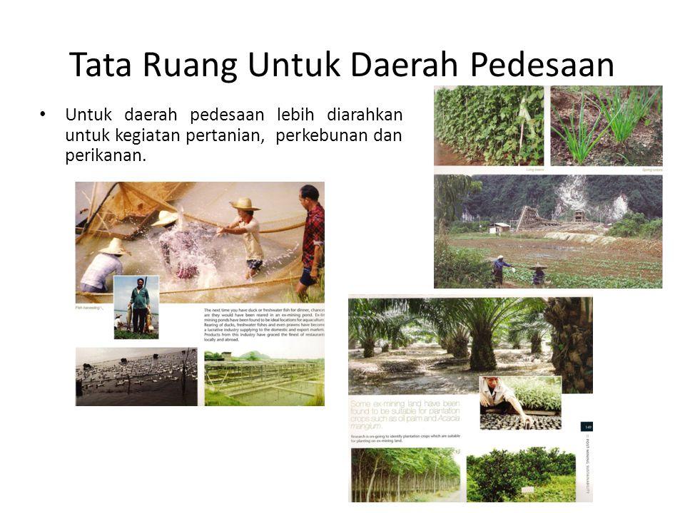 Tata Ruang Untuk Daerah Pedesaan Untuk daerah pedesaan lebih diarahkan untuk kegiatan pertanian, perkebunan dan perikanan.