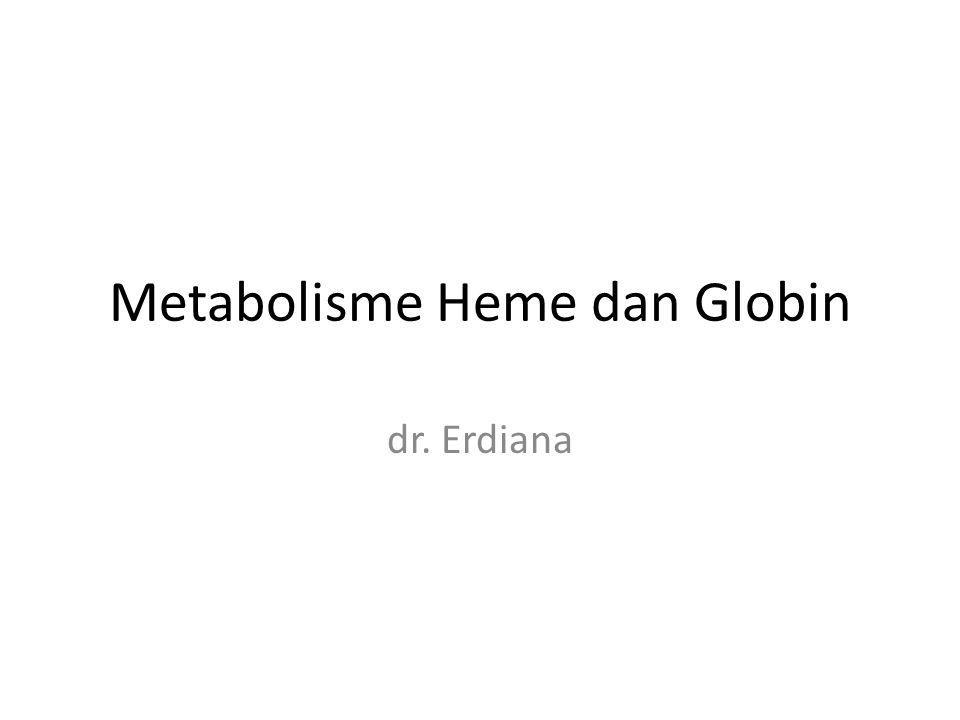 Metabolisme Heme dan Globin dr. Erdiana