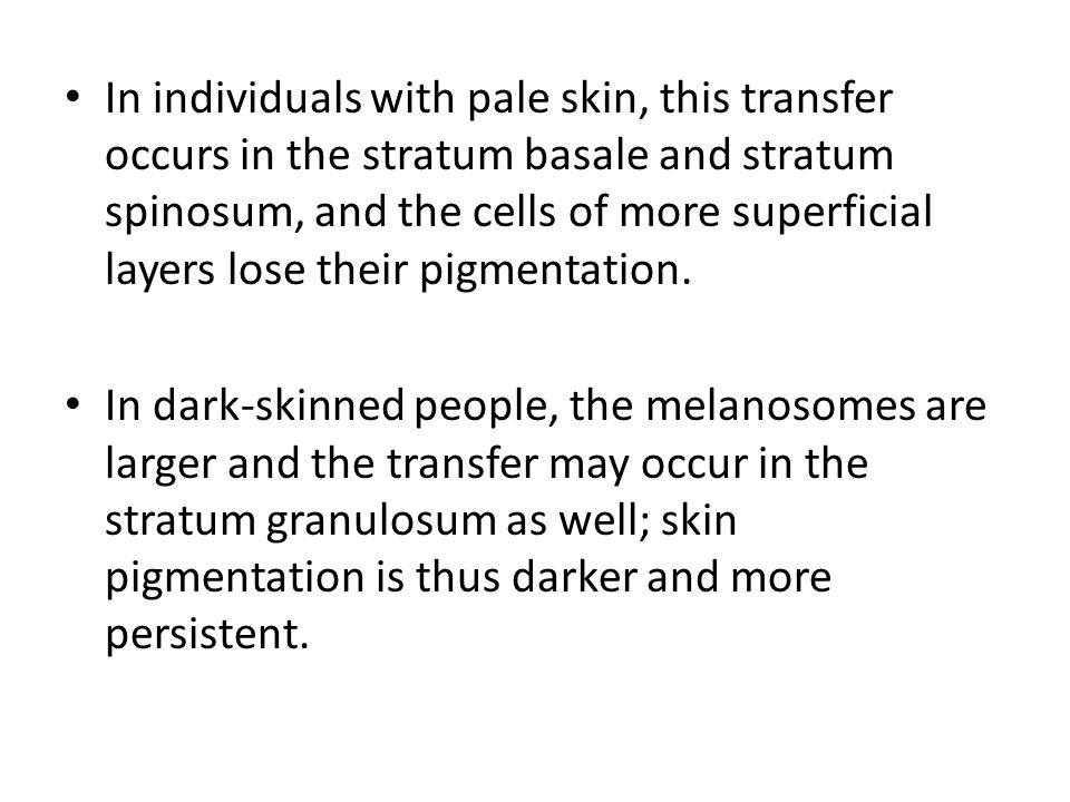 In individuals with pale skin, this transfer occurs in the stratum basale and stratum spinosum, and the cells of more superficial layers lose their pi