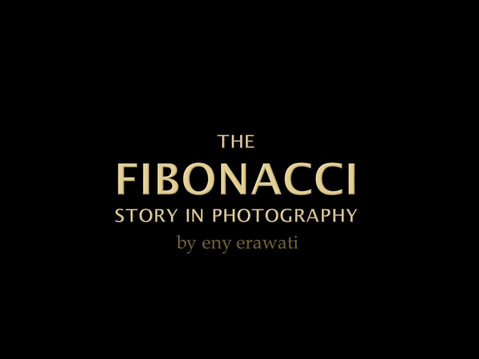 eny erawati The Story of Fibonacci