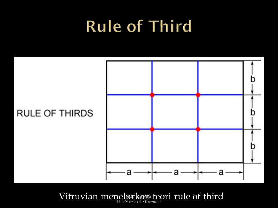 Vitruvian menelurkan teori rule of third eny erawati The Story of Fibonacci