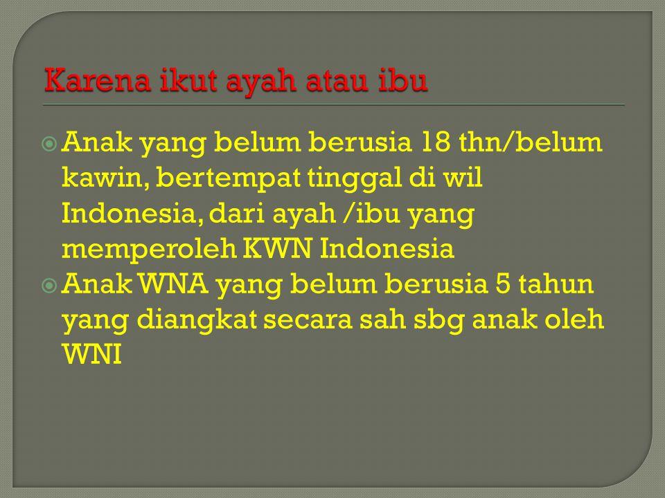  Anak yang belum berusia 18 thn/belum kawin, bertempat tinggal di wil Indonesia, dari ayah /ibu yang memperoleh KWN Indonesia  Anak WNA yang belum berusia 5 tahun yang diangkat secara sah sbg anak oleh WNI