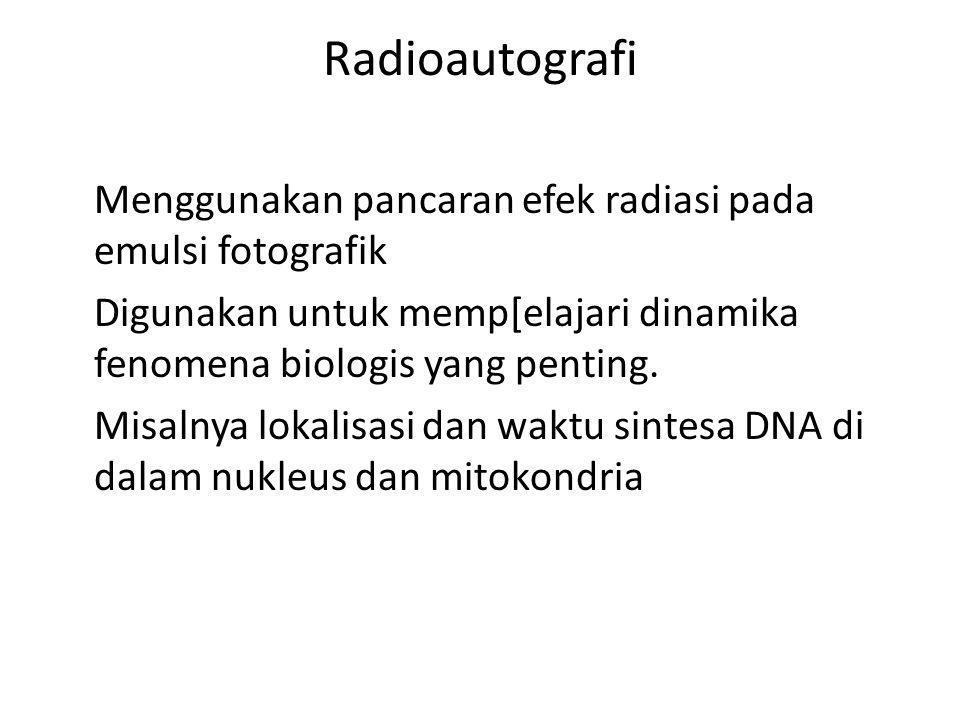 Radioautografi Menggunakan pancaran efek radiasi pada emulsi fotografik Digunakan untuk memp[elajari dinamika fenomena biologis yang penting.