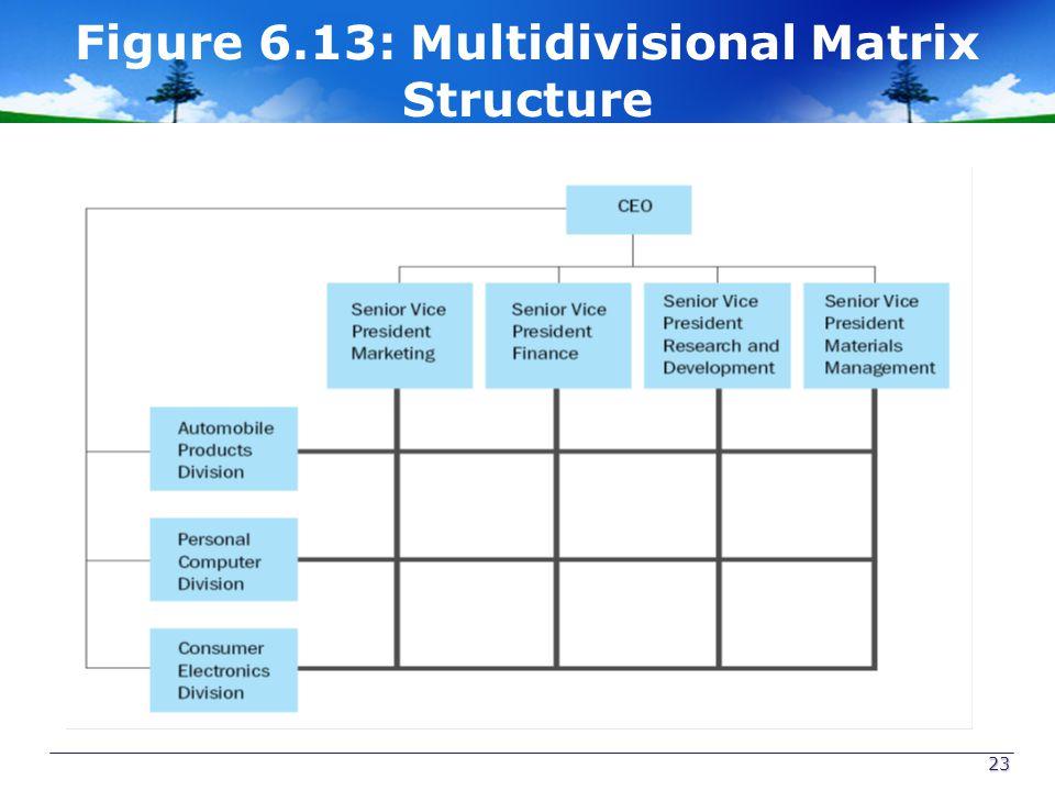 Figure 6.13: Multidivisional Matrix Structure 23