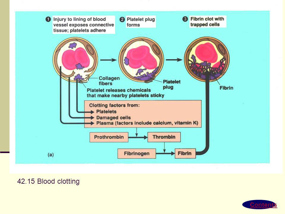 Contents 42.14 Differentiation of blood cells