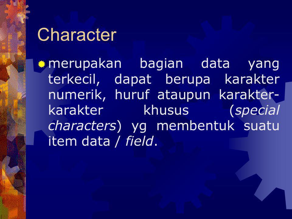 Character  merupakan bagian data yang terkecil, dapat berupa karakter numerik, huruf ataupun karakter- karakter khusus (special characters) yg memben