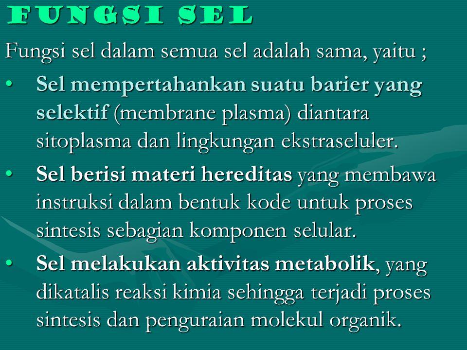 Fungsi sel Fungsi sel dalam semua sel adalah sama, yaitu ; Sel mempertahankan suatu barier yang selektif (membrane plasma) diantara sitoplasma dan lin