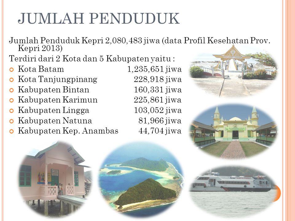 GAMBARAN UMUM Dibentuk berdasarkan UU No 22 Th 2002 tentang Pembentukan Provinsi Kepulauan Riau Luas wilayah 252.602 km2 (96 % lautan ) Luas daratan 9