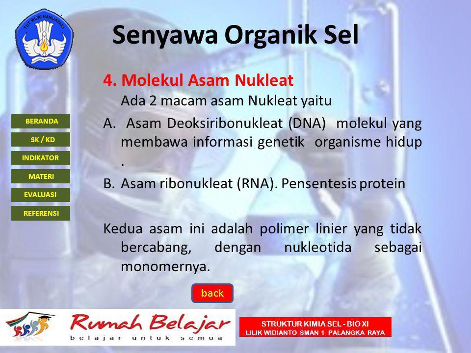 BERANDA INDIKATOR SK / KD MATERI EVALUASI REFERENSI STRUKTUR KIMIA SEL - BIO XI LILIK WIDIANTO SMAN 1 PALANGKA RAYA Senyawa Organik Sel 4. Molekul Asa