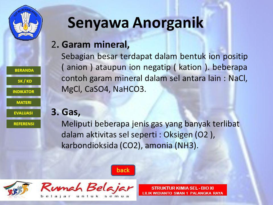 BERANDA INDIKATOR SK / KD MATERI EVALUASI REFERENSI STRUKTUR KIMIA SEL - BIO XI LILIK WIDIANTO SMAN 1 PALANGKA RAYA Senyawa Anorganik 2. Garam mineral