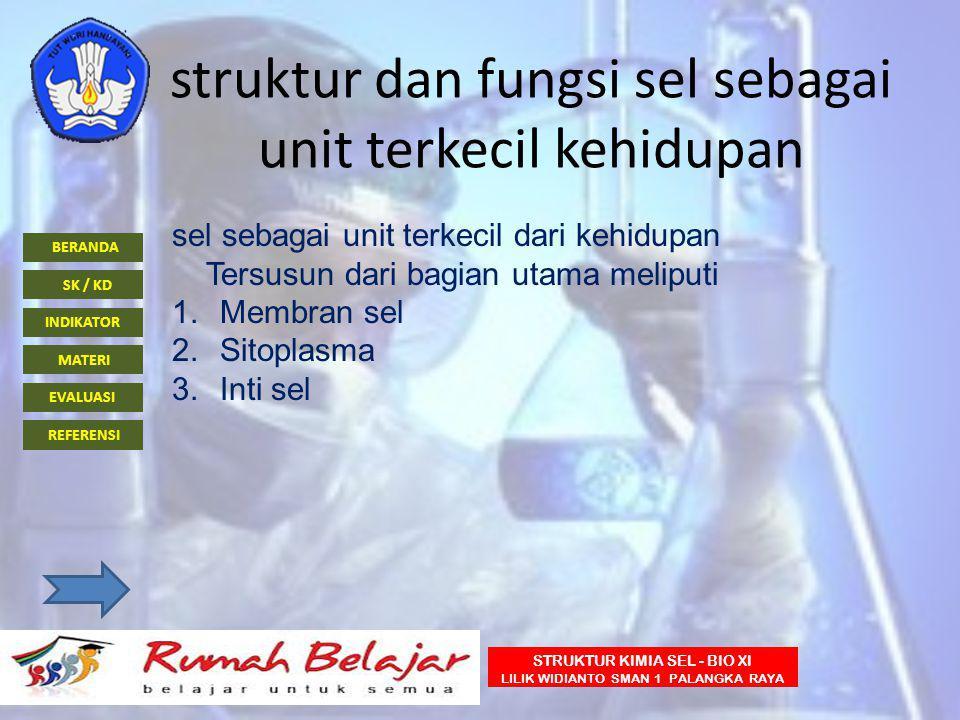 BERANDA INDIKATOR SK / KD MATERI EVALUASI REFERENSI STRUKTUR KIMIA SEL - BIO XI LILIK WIDIANTO SMAN 1 PALANGKA RAYA struktur dan fungsi sel sebagai un