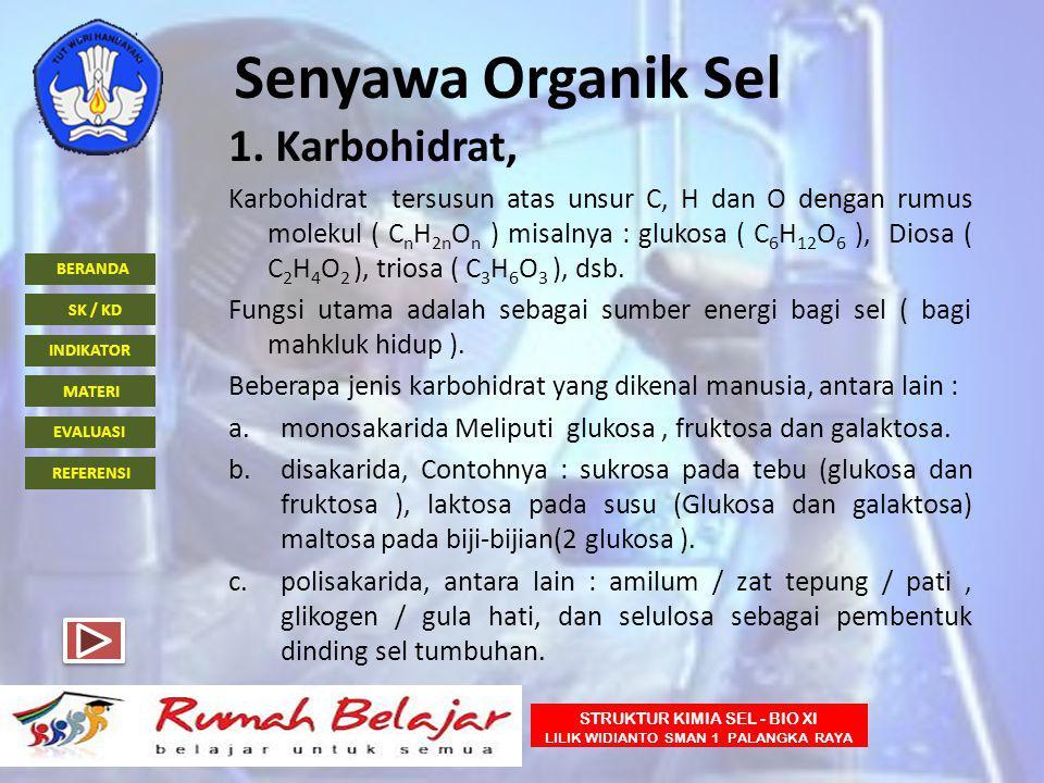 BERANDA INDIKATOR SK / KD MATERI EVALUASI REFERENSI STRUKTUR KIMIA SEL - BIO XI LILIK WIDIANTO SMAN 1 PALANGKA RAYA Senyawa Organik Sel 1. Karbohidrat