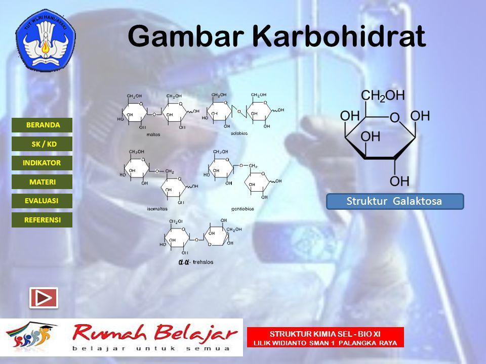 BERANDA INDIKATOR SK / KD MATERI EVALUASI REFERENSI STRUKTUR KIMIA SEL - BIO XI LILIK WIDIANTO SMAN 1 PALANGKA RAYA Gambar Karbohidrat Struktur Galakt