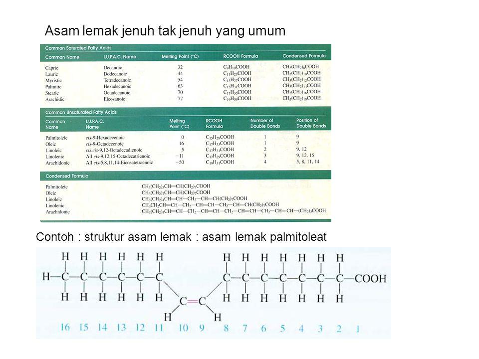 Asam lemak jenuh tak jenuh yang umum Contoh : struktur asam lemak : asam lemak palmitoleat