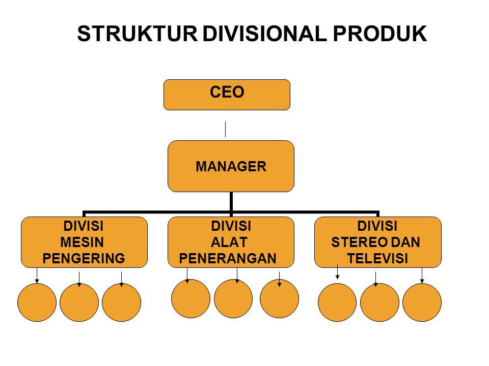 MANAGER DIVISI MESIN PENGERING DIVISI ALAT PENERANGAN DIVISI STEREO DAN TELEVISI CEO STRUKTUR DIVISIONAL PRODUK