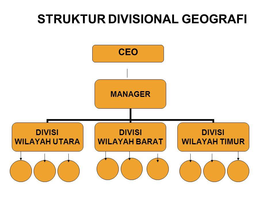 MANAGER DIVISI WILAYAH UTARA DIVISI WILAYAH BARAT DIVISI WILAYAH TIMUR CEO STRUKTUR DIVISIONAL GEOGRAFI