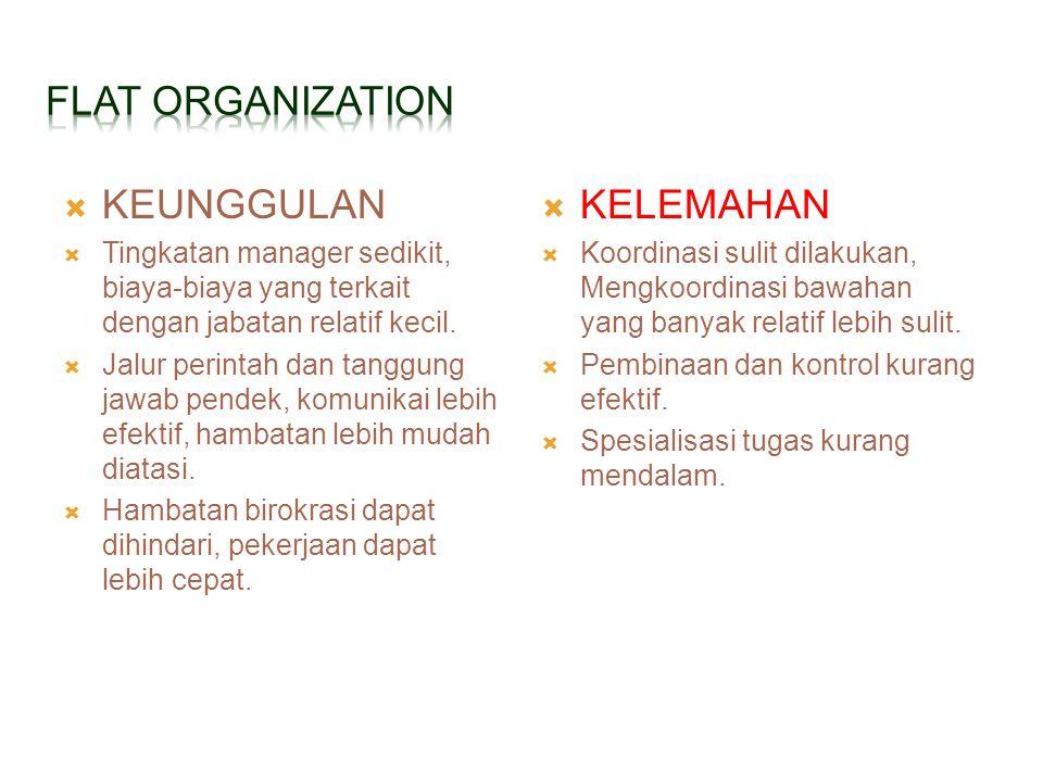  KEUNGGULAN  Tingkatan manager sedikit, biaya-biaya yang terkait dengan jabatan relatif kecil.  Jalur perintah dan tanggung jawab pendek, komunikai