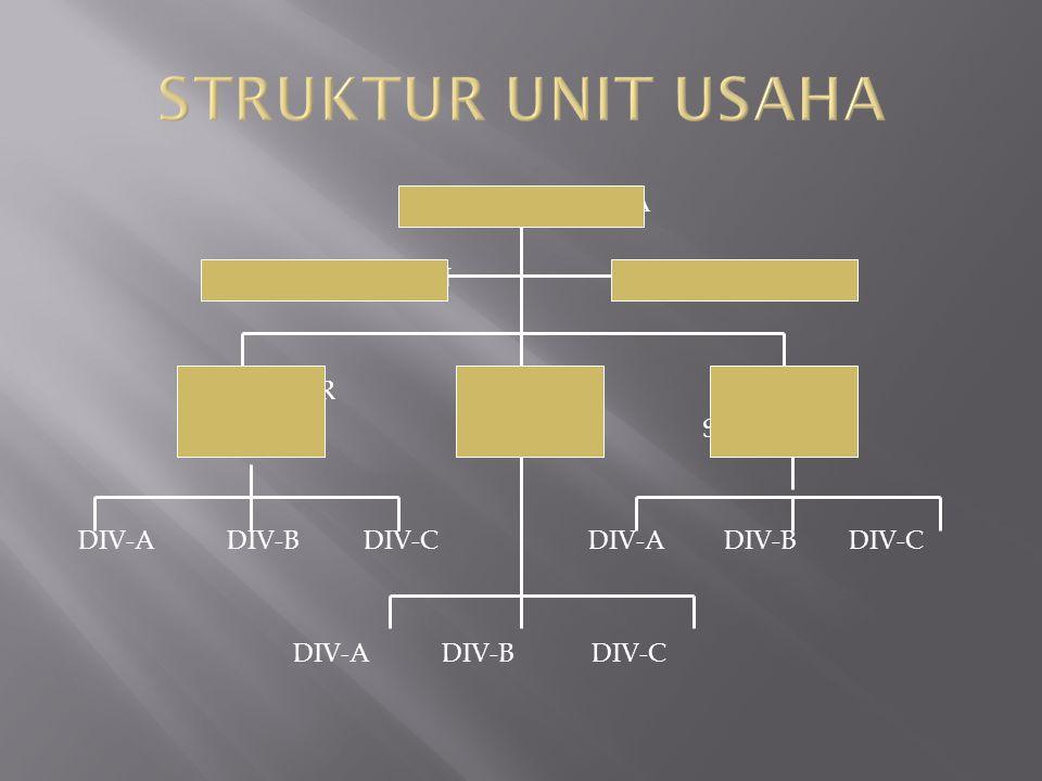 DIREKTUR UTAMA DIR KEUANGAN DIR OPERASI MANAJER MANAJER MANAJER SBU-1 SBU-2 SBU-3 DIV-A DIV-B DIV-C DIV-A DIV-B DIV-C