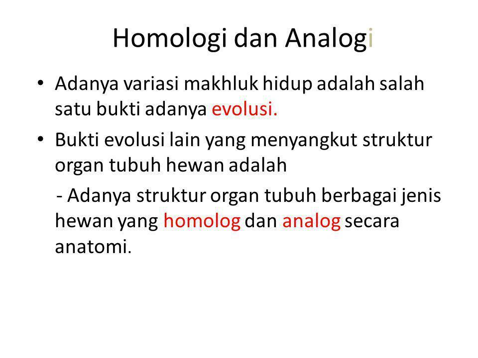 Homologi dan Analogi Adanya variasi makhluk hidup adalah salah satu bukti adanya evolusi. Bukti evolusi lain yang menyangkut struktur organ tubuh hewa
